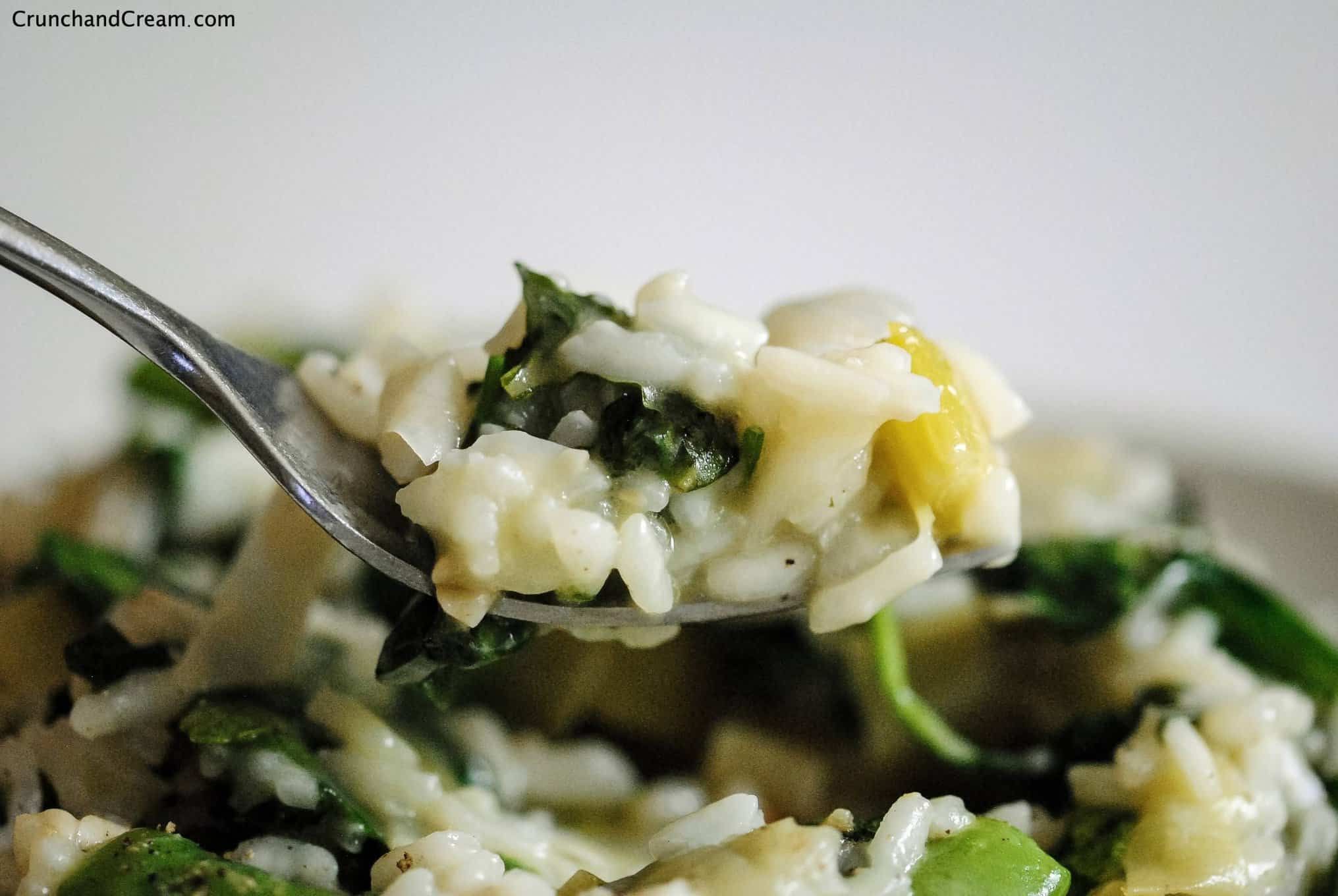 a forkful of risotto with baby spinach, leeks, herbs and sugar snap peas