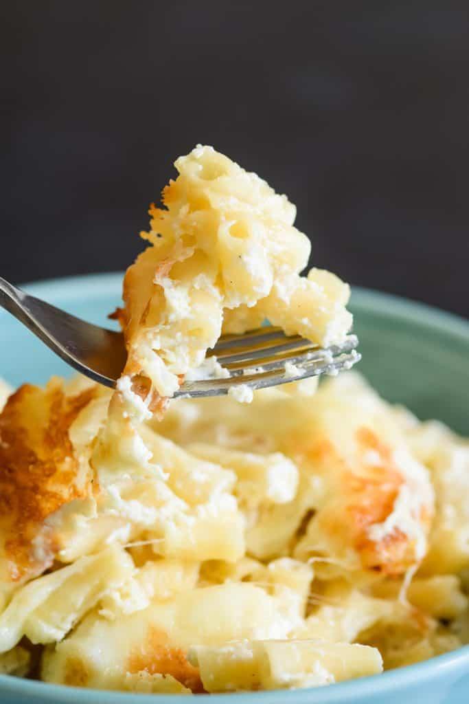 forkful of gooey macaroni cheese