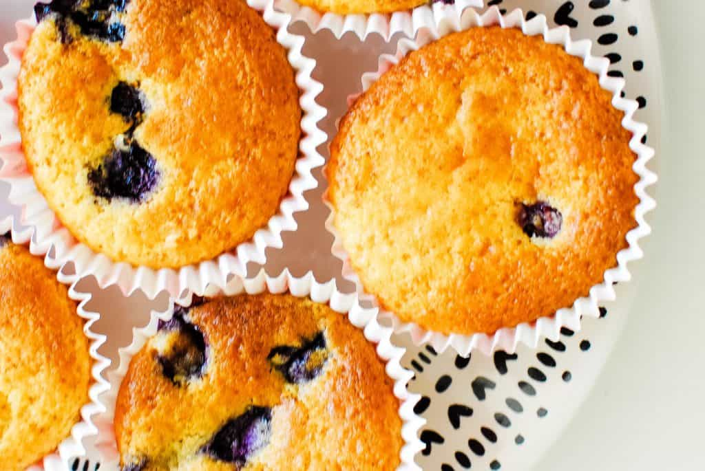 plate of blueberry cupcakes